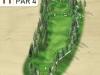 golf_tour_11-jpg