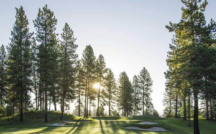 Members Trade Up on Demo Day at Whitetail Club Golf
